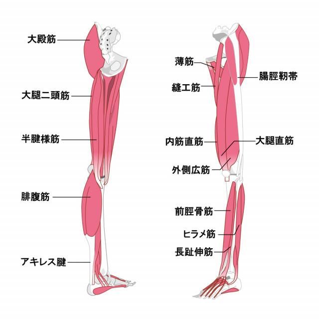 当院の「捻挫」症状に対してのアプローチ